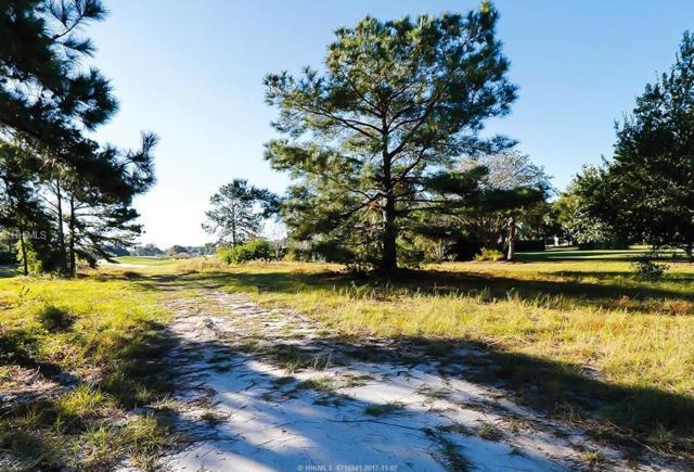 55 Magnolia Blossom Drive, Bluffton, SC 29910 (MLS #371892) :: Beth Drake REALTOR®