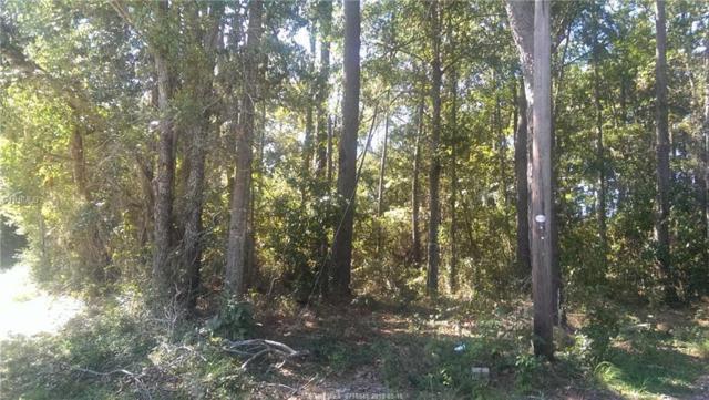 14 Warren Lane, Beaufort, SC 29906 (MLS #371936) :: Southern Lifestyle Properties