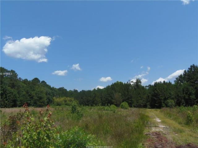 001 Hwy 46, Hardeeville, SC 29927 (MLS #374087) :: The Alliance Group Realty