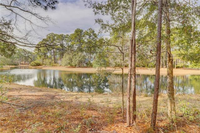 6 Dunlin Place, Hilton Head Island, SC 29926 (MLS #375348) :: Collins Group Realty
