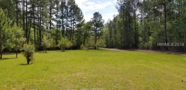 468 Woodsville Road, Pineland, SC 29934 (MLS #379483) :: The Alliance Group Realty