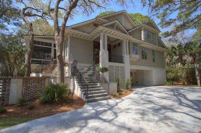 20 Black Skimmer Road, Hilton Head Island, SC 29928 (MLS #379790) :: Collins Group Realty