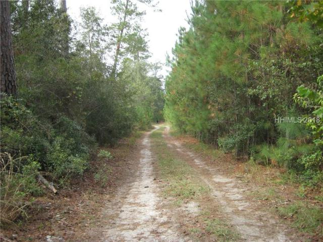 0 Langforville Rd, Grays, SC 29916 (MLS #387858) :: Collins Group Realty