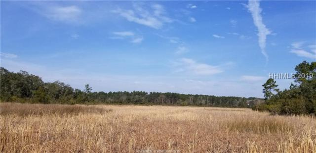 1275 Good Hope Road, Hardeeville, SC 29927 (MLS #389913) :: The Alliance Group Realty