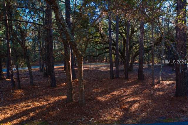 14 Hasell Pointe Rd, Okatie, SC 29909 (MLS #412399) :: Hilton Head Dot Real Estate