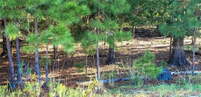 1262 Wiregrass Way, Hardeeville, SC 29927 (MLS #379127) :: Beth Drake REALTOR®