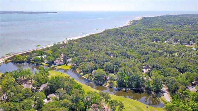 3 Hermit Crab Court, Hilton Head Island, SC 29926 (MLS #379763) :: RE/MAX Island Realty