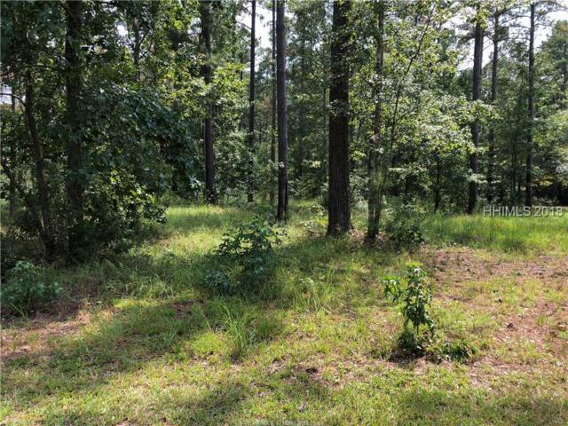 147 Topside W, Hardeeville, SC 29927 (MLS #385283) :: RE/MAX Coastal Realty
