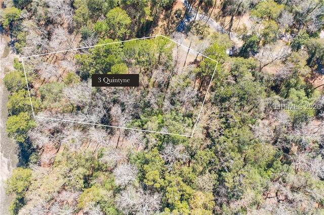 3 Quintyne Court, Seabrook, SC 29940 (MLS #400333) :: Southern Lifestyle Properties