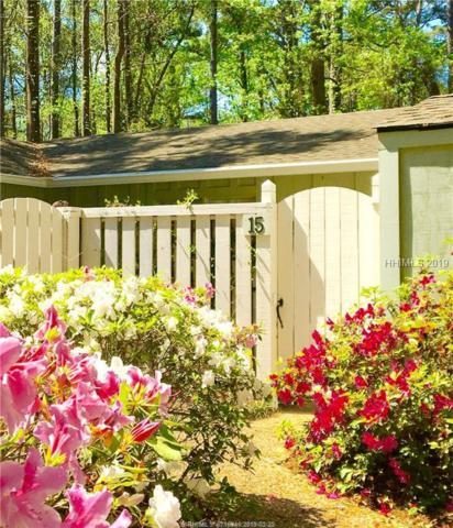 15 Broomsedge Court, Hilton Head Island, SC 29926 (MLS #389985) :: Southern Lifestyle Properties