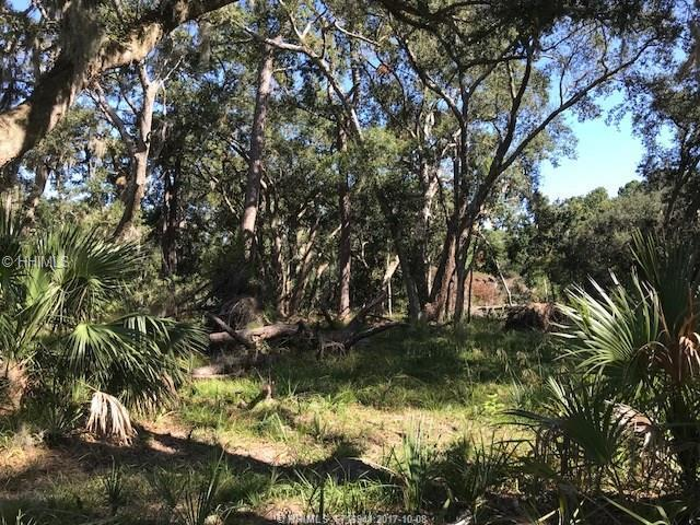 33 Cedar Cove Lane, Daufuskie Island, SC 29915 (MLS #370621) :: The Alliance Group Realty