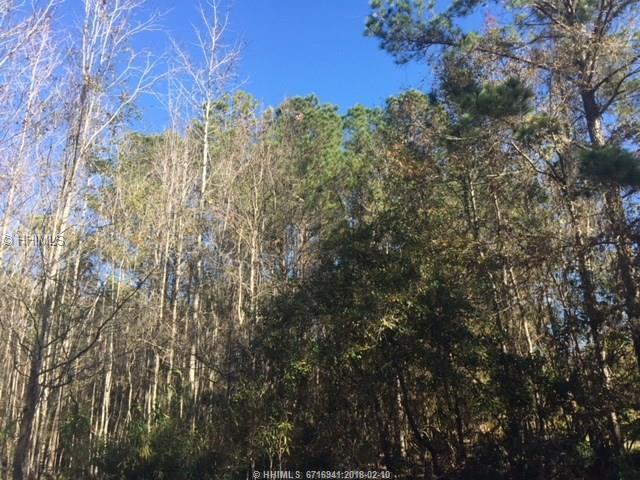 41 Wicklow Drive, Bluffton, SC 29910 (MLS #375327) :: RE/MAX Island Realty