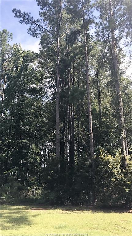 14 Driftwood Court W, Bluffton, SC 29910 (MLS #375563) :: Beth Drake REALTOR®