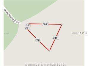 55 Greenwood Drive, Bluffton, SC 29910 (MLS #378659) :: RE/MAX Island Realty