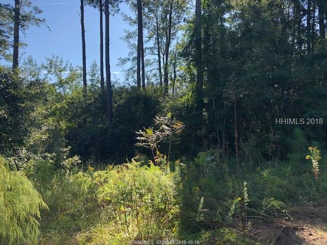225 Goethe Road, Bluffton, SC 29910 (MLS #387169) :: Southern Lifestyle Properties
