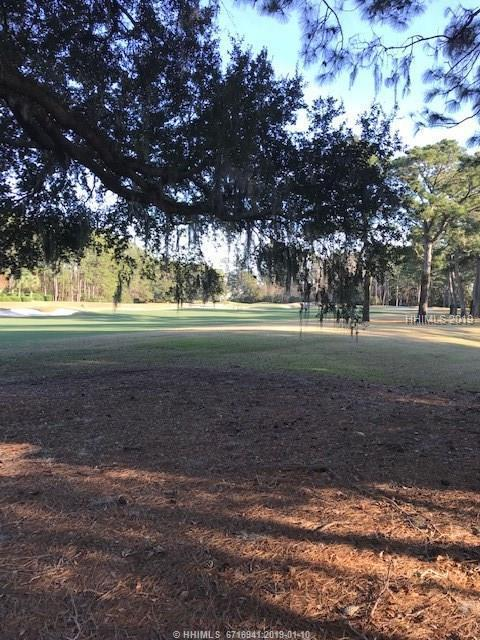 3 W Middleburg Court, Bluffton, SC 29910 (MLS #389016) :: RE/MAX Island Realty