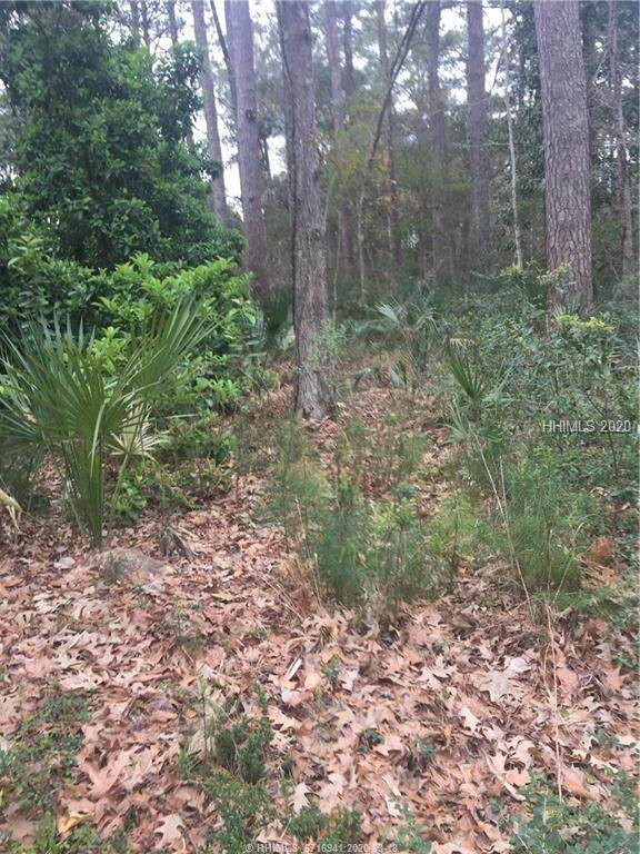 226 Callawassie Drive, Okatie, SC 29909 (MLS #401478) :: Hilton Head Dot Real Estate