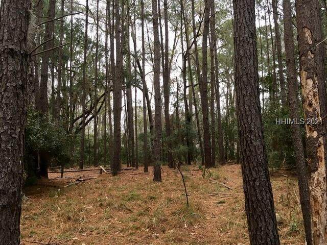 32 Plantation House Drive, Bluffton, SC 29910 (MLS #411865) :: Collins Group Realty