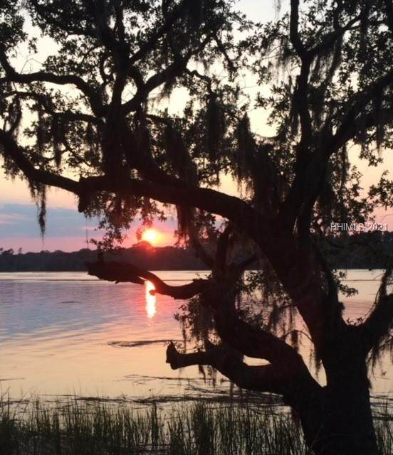 71 Harrison Island Rd, Bluffton, SC 29909 (MLS #414213) :: Coastal Realty Group