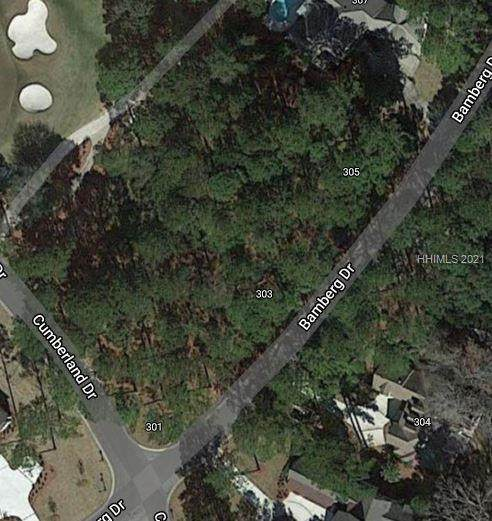 303 Bamberg Drive, Bluffton, SC 29910 (MLS #414363) :: Coastal Realty Group