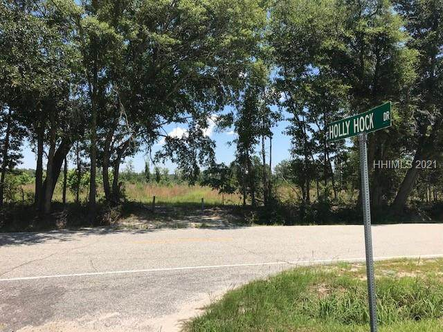 TBD Langfordville Rd. Road, Ridgeland, SC 29936 (MLS #416091) :: Charter One Realty