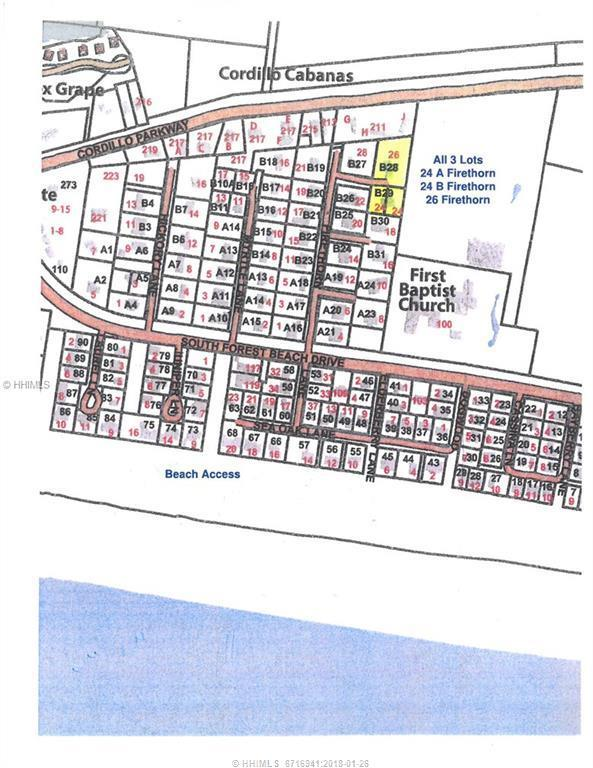 24 Firethorn Lane, Hilton Head Island, SC 29928 (MLS #359962) :: Collins Group Realty