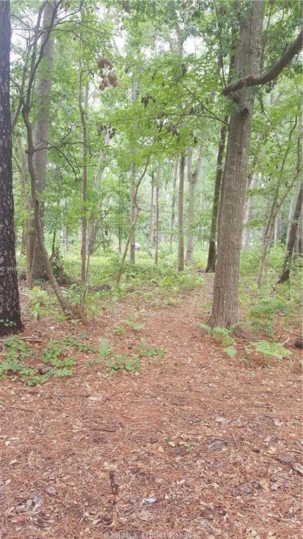33 Wood Eden Lane, Bluffton, SC 29910 (MLS #367187) :: RE/MAX Island Realty