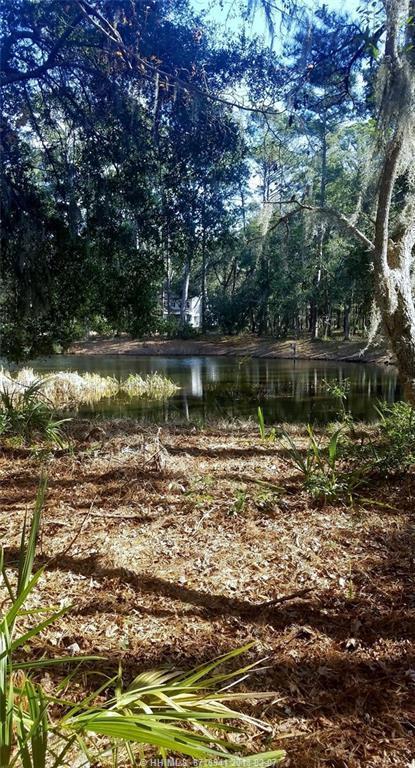 6 Marsh Lake Lane, Daufuskie Island, SC 29915 (MLS #374982) :: RE/MAX Coastal Realty