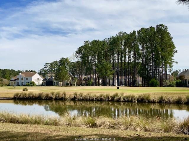 115 Wicklow Drive, Bluffton, SC 29910 (MLS #391568) :: Collins Group Realty