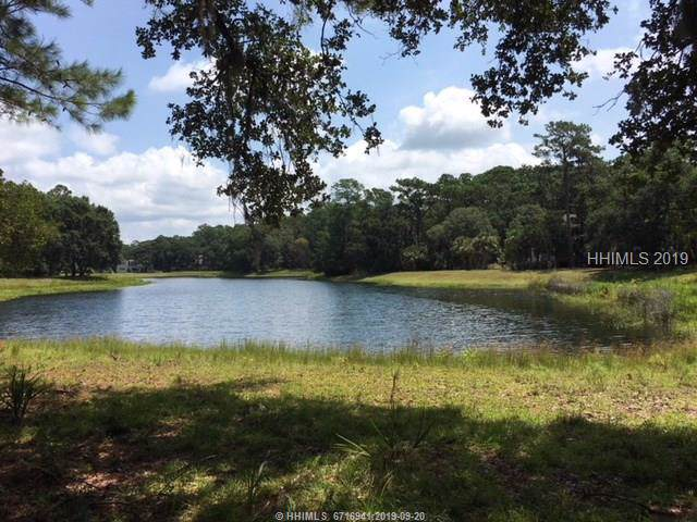 17 Forest Lake Drive, Daufuskie Island, SC 29915 (MLS #396453) :: RE/MAX Coastal Realty