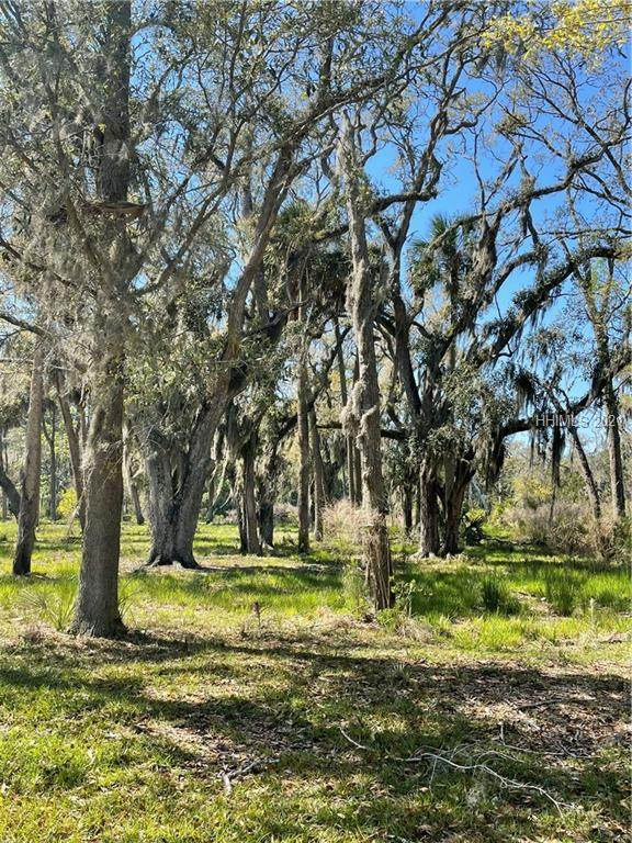 9 Sea Shade Way, Daufuskie Island, SC 29915 (MLS #413978) :: The Bradford Group