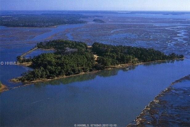 12 Jack Rowe Island Drive, Bluffton, SC 29910 (MLS #373964) :: RE/MAX Coastal Realty
