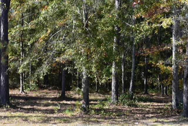 9 Wood Sorrel Circle, Bluffton, SC 29909 (MLS #388382) :: Beth Drake REALTOR®