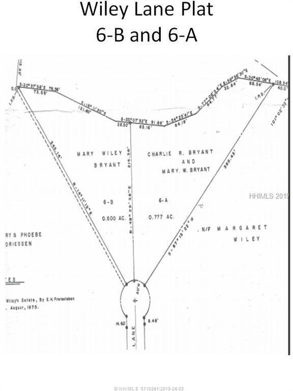 6-B Wiley Lane, Hilton Head Island, SC 29926 (MLS #392170) :: The Alliance Group Realty
