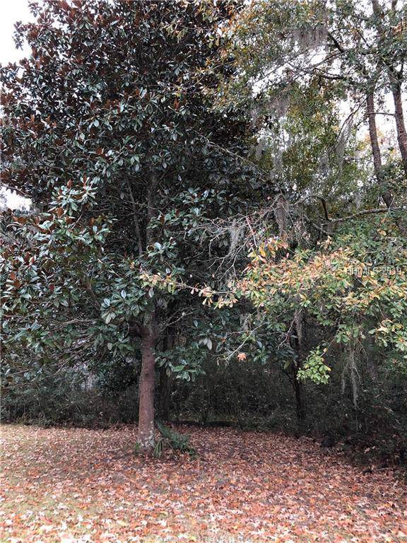 66 Coosaw Way, Ridgeland, SC 29936 (MLS #388626) :: Southern Lifestyle Properties