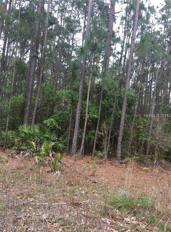00 Off Hwy 17, Pocataligo, SC 29945 (MLS #379264) :: Southern Lifestyle Properties