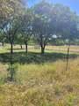TBD Mimosa - Photo 1