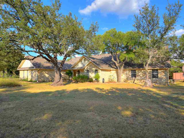 307 Delaware  Springs Boulevard, Burnet, TX 78611 (#140895) :: The ZinaSells Group