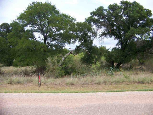 61 Lazy Oaks Lane, Kingsland, TX 78639 (#141077) :: The ZinaSells Group