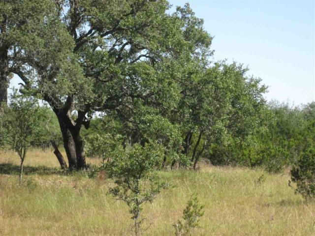 Lot 13V Oak Vista Replat, Burnet, TX 78611 (#141816) :: The ZinaSells Group