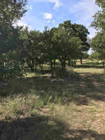 Lot 10 Eagle Point Drive, Kingsland, TX 78639 (#141841) :: The ZinaSells Group