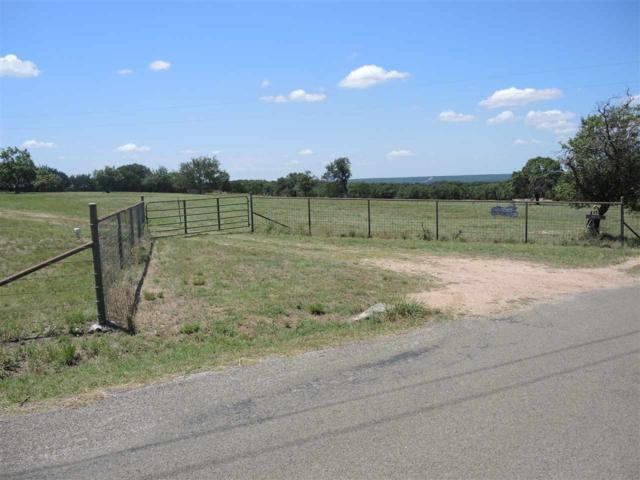 4610 County Road 108, Burnet, TX 78611 (#141851) :: The ZinaSells Group