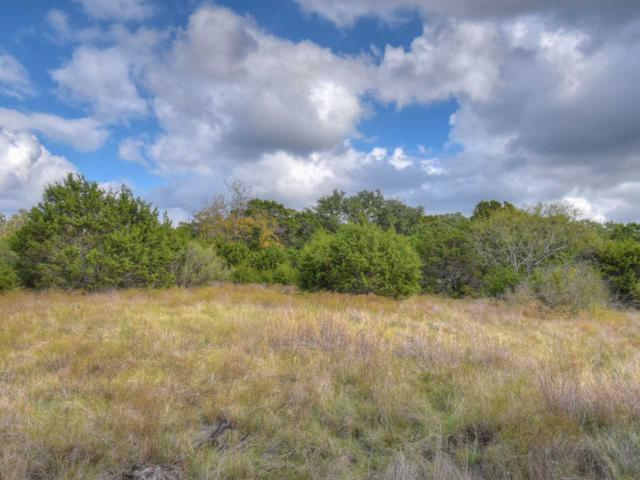 TBD Cr 333, Bertram, TX 78605 (#142149) :: The ZinaSells Group