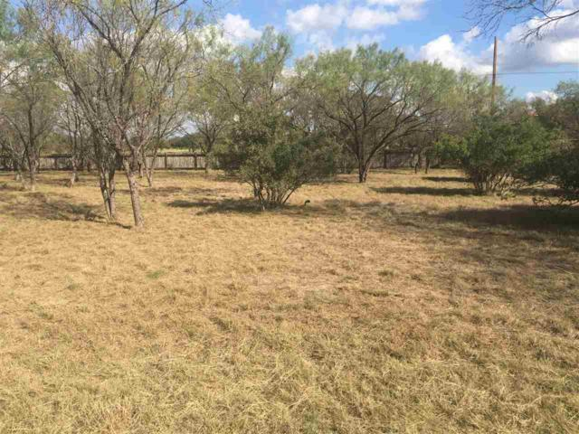 TBD Sun Ray, Horseshoe Bay, TX 78657 (#142153) :: The ZinaSells Group