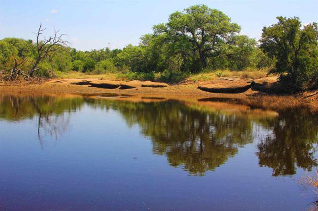 8820 W Rr 1431 Highway, Buchanan Dam, TX 78609 (#142265) :: The ZinaSells Group