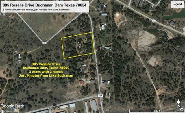 305 Roselea, Buchanan Dam, TX 78609 (#142410) :: The ZinaSells Group