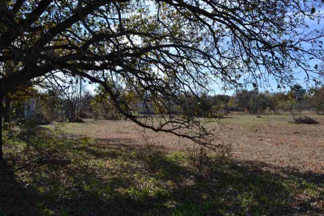 Lot 227 Stripper Haven, Buchanan Dam, TX 78609 (#142437) :: The ZinaSells Group