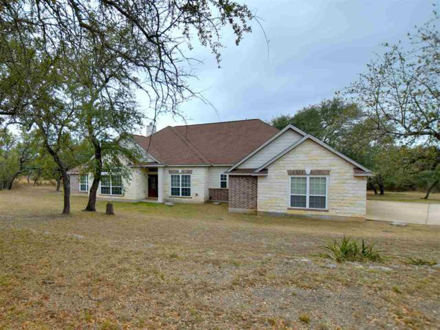 565 Crystal Mountain Drive, Round Mountain, TX 78663 (#143112) :: The ZinaSells Group