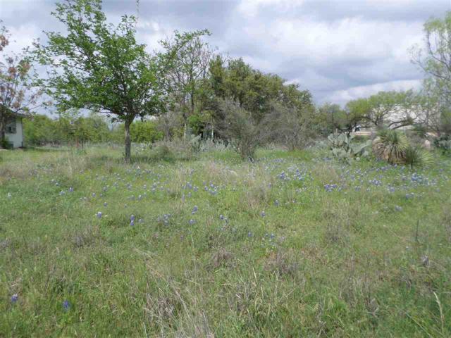 128 Southwood W, Granite Shoals, TX 78654 (#143320) :: The ZinaSells Group