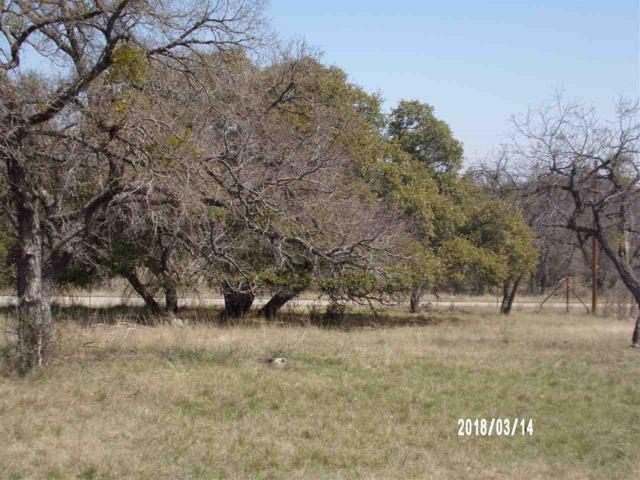117 Offer Lane, Llano, TX 78643 (#143382) :: The ZinaSells Group